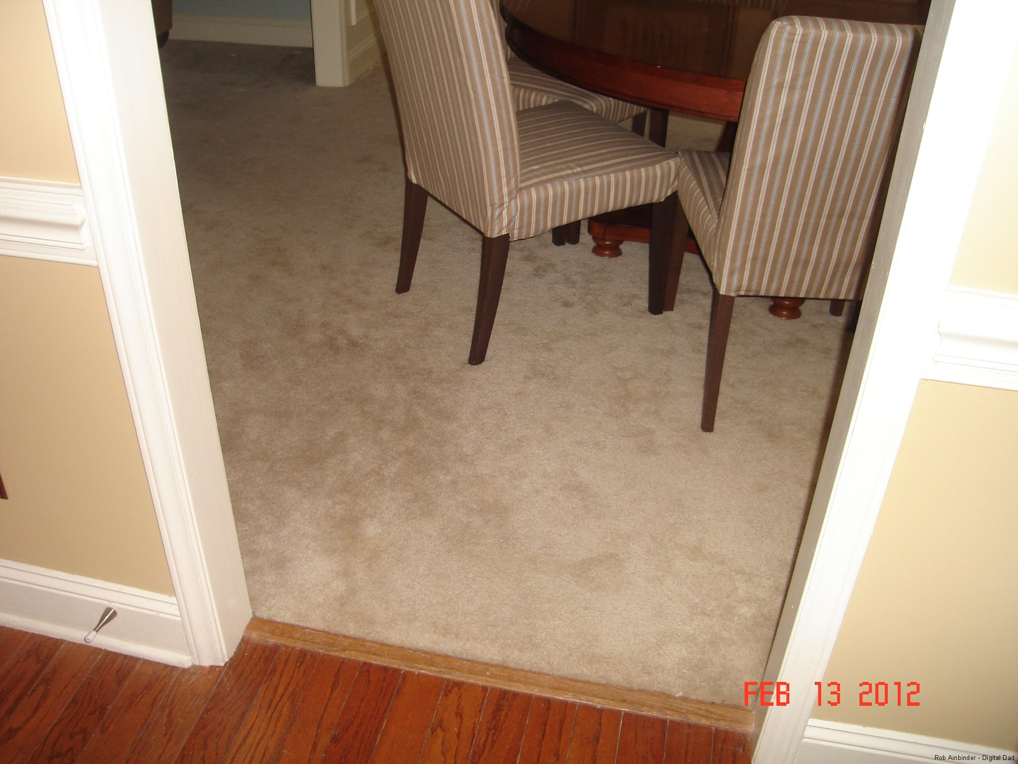 Carpet in the Dining Room