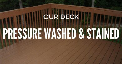 deck-pressure-washed-cabot-chestnut-brown-stain