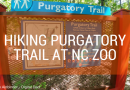 Purgatory Mountain Asheboro, NC – Hiking Trail at NC Zoo