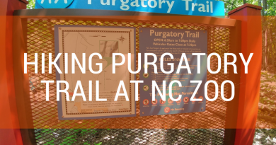 Hiking trail at Purgatory Mountain NC Zoo