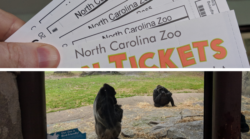 Return to the Zoo: NC Zoo Summer Camp Preview, Ticket & Day Camp Giveaway